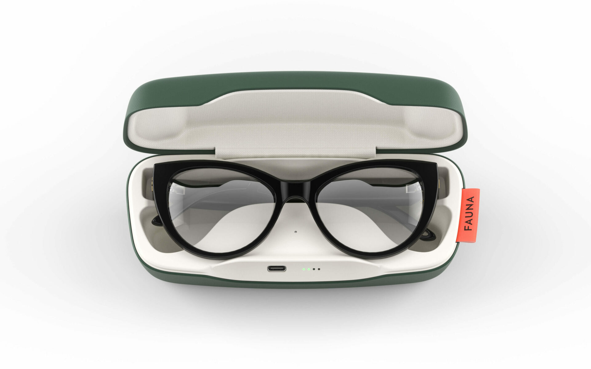 Fauna Levia Black audio glasses in charging case