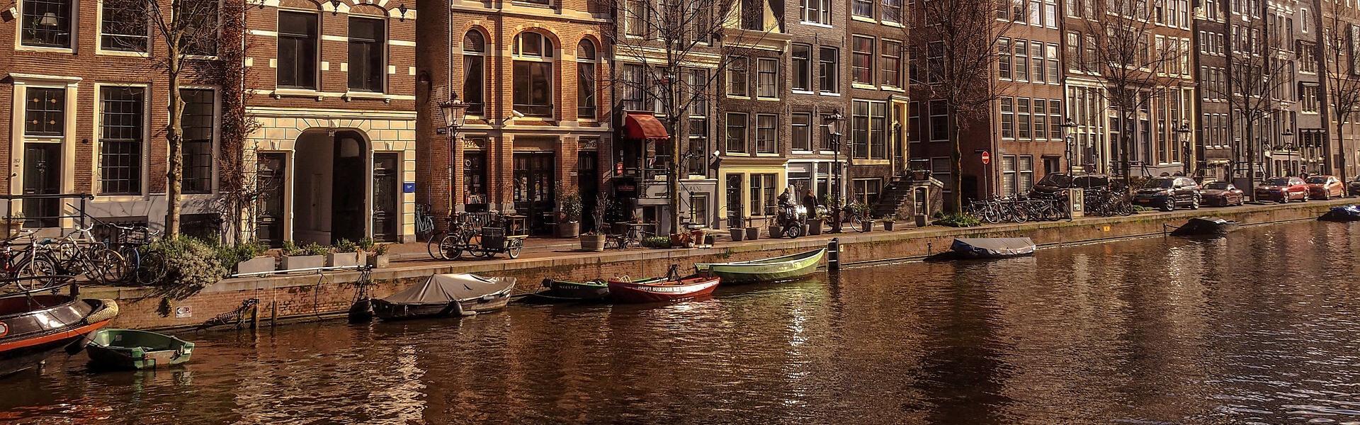 Buy Fauna Audio Eyewear in Amsterdam